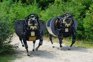 Two Ls3 robots
